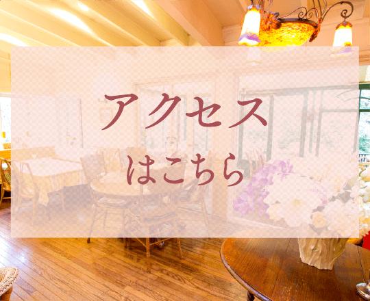 つくばの紅茶専門店アフタヌーンティー|アリスの茶屋アクセス
